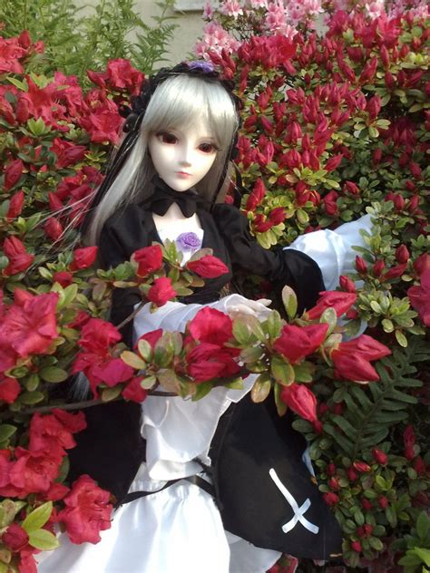 Garden Bjd Suigintou Bjd Hedged With Flowers By Angyvalentine On