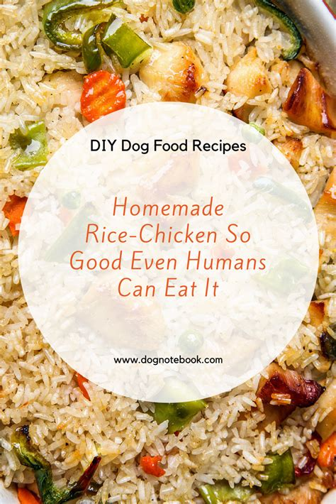 Homemade dog food recipe chicken rice forumfinder
