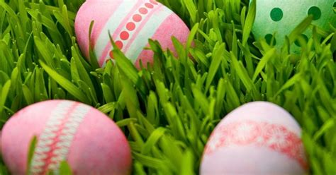 easter facts what is the easter story top facts about the easter bunny