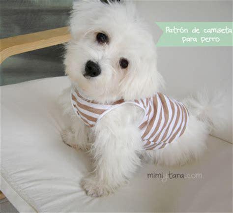 moldes de vestido perro consejos de fotografa patr 243 n de camiseta para perro mimi y tara