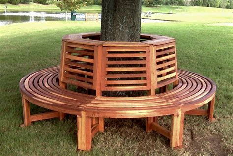 tree bench built   decades  redwood