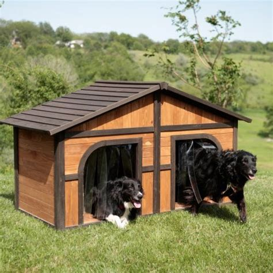 dog house door ideas 34 doggone good backyard dog house ideas