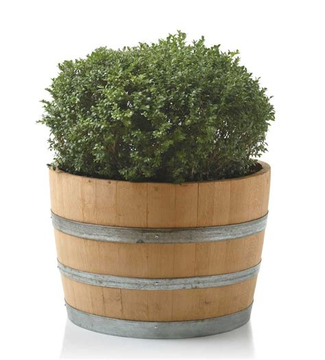 Wine Barrel Planters Ideas 187 Home Decorations Insight Barrel Planter