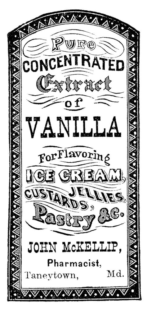 vanilla extract label template vintage clip apothecary label vanilla extract