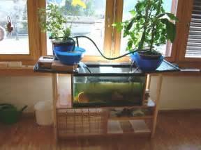 home aquaponics aquaponics plans