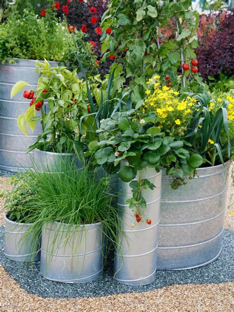 large container garden using large garden pots hgtv
