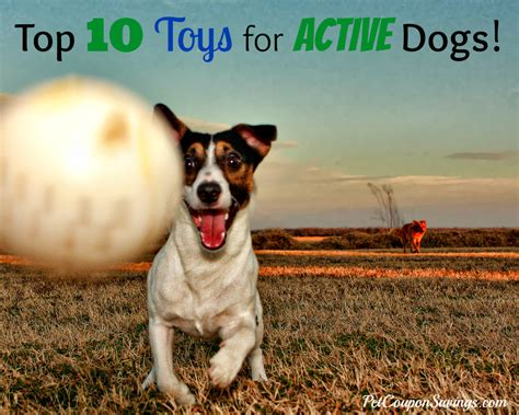 best toys for puppies top 10 toys for active dogs