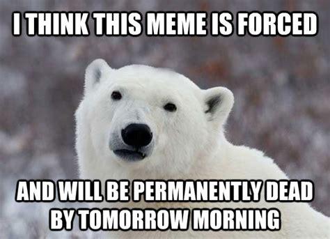 Polar Bear Meme - polar bear cake memes