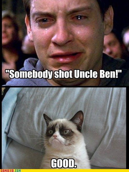 Pete Cbell Meme - 17 best images about cat laughs on pinterest thank you
