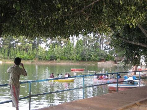 chennai boat club pictures boat club picture of yelagiri hills tamil nadu