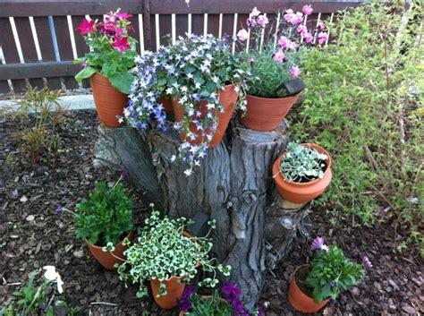 como decorar un arbol seco en el jardin