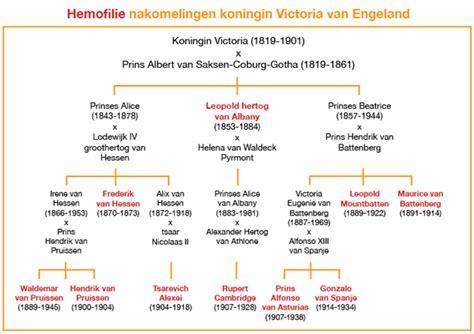 koninklijk huis werkstuk victoria en albert gaven koninklijke ziekte door