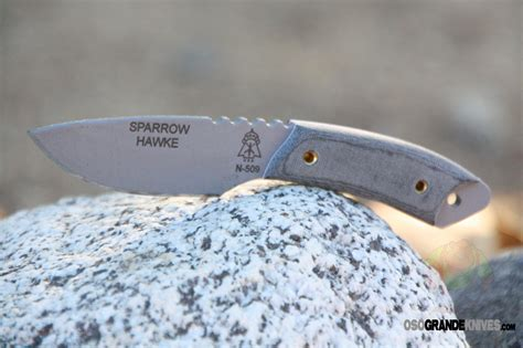 tops sparrow hawke tops knives sparrow hawke fixed blade knife 2 5 in grey