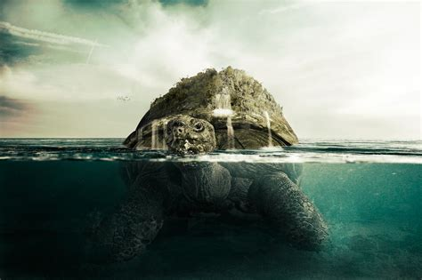 Kaos Oceanseven Awesome Animal 30 Tx turtle tut by pshoudini on deviantart