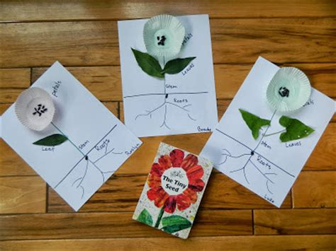 Thanksgiving Craft Ideas Planting Tree Coloring Page - exploring plants with ted s