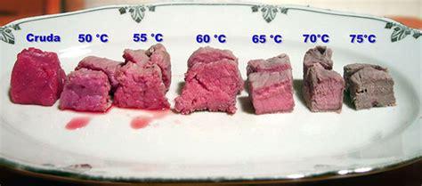 come si cucina una fiorentina come si cucina una bistecca alla fiorentina a regola d