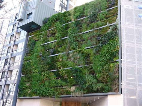 home vertical garden inspiring and innovative designs and ideas for vertical