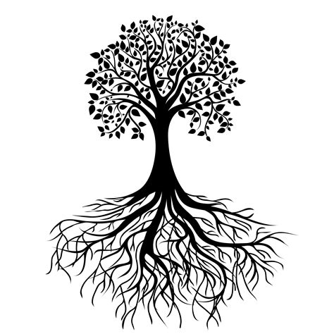 design root meaning tree roots png the writing tree old house pinterest