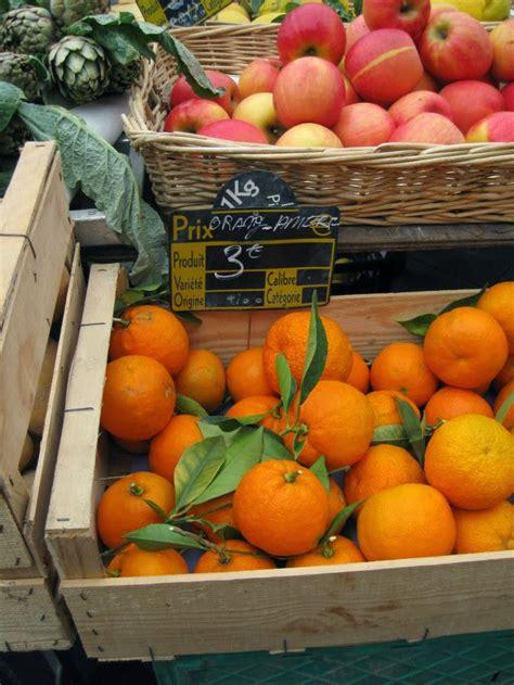 sclerosi multipla alimentazione papille vagabonde alimentazione e sclerosi multipla
