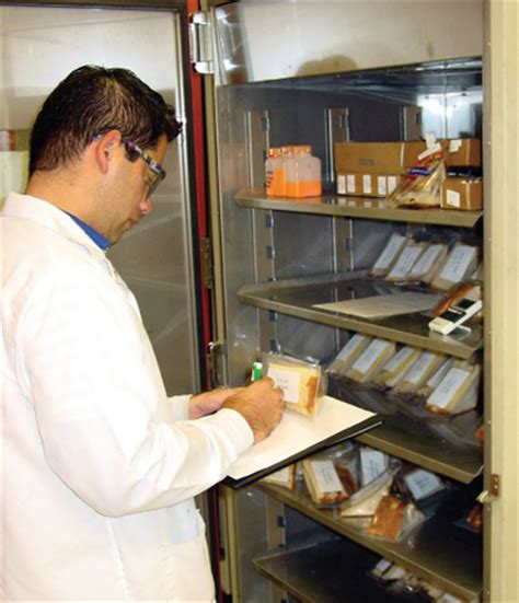 Shelf Testing by Steady Gain In Food And Beverage Preservation Industry