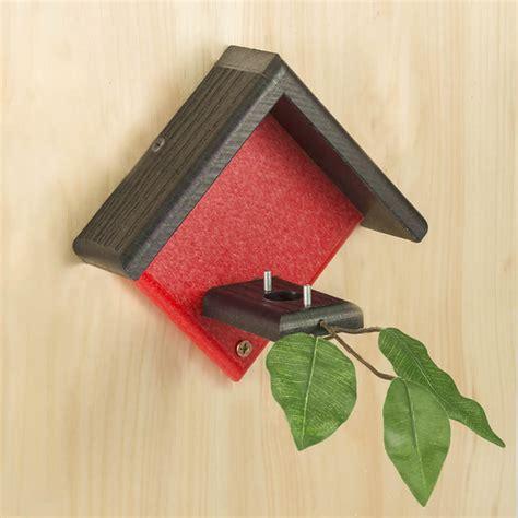 duncraftcom duncraft  red hummingbird house