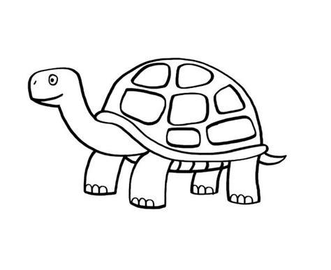 Imagenes De Tortugas Faciles Para Dibujar | tortuga dibujo para colorear e imprimir