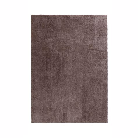 home decorators collection ethereal taupe  ft   ft
