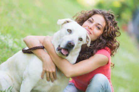 dogs don t like hugs study shows dogs don t like hugs sson smiles pet care