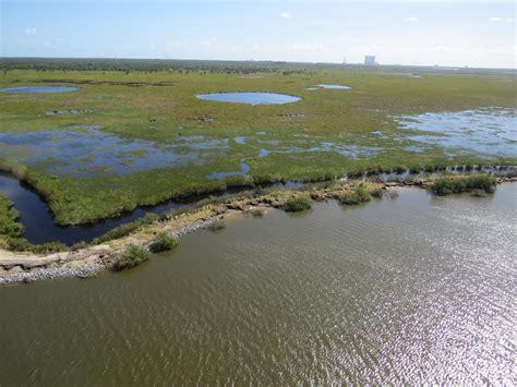 merritt island natiional wildlife refuge titusville