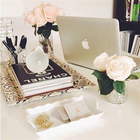 8 Pretty White Accessories by Fancy Office Decor The Python Desk Tray White