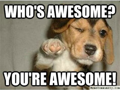 You Are Awesome Meme - who s awesome you are awesome memecommunity com