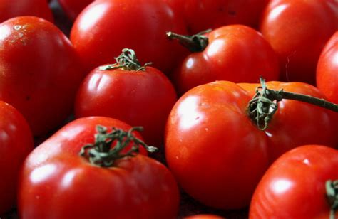 The Tomato by Late Season Tomatoes Eat Local Northwest