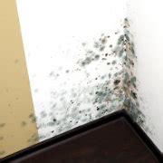 Enlever Des Moisissures Sur Un Mur by Moisissure Sur Mur Causes Et Comment Enlever 233 Viter