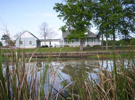 bayou beds 232 best the bayou images on pinterest louisiana