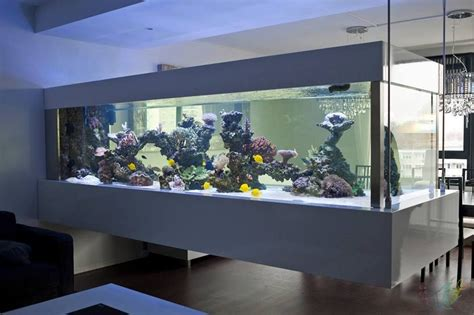 aquarium refuge design onur can