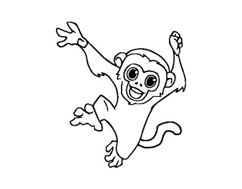 capuchin monkey coloring pages baby capuchin monkey coloring page coloringcrew com