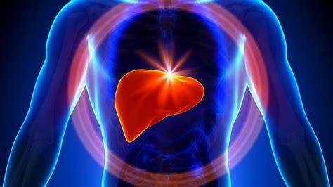 alimenti per disintossicare fegato i migliori 12 alimenti per disintossicare il fegato bombagi 249