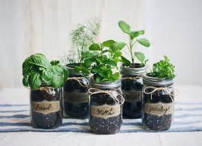 Pottery Kitchen Canisters diy mason jar fresh herb garden