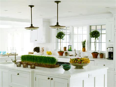 kitchen topiary kitchen topiaries design ideas