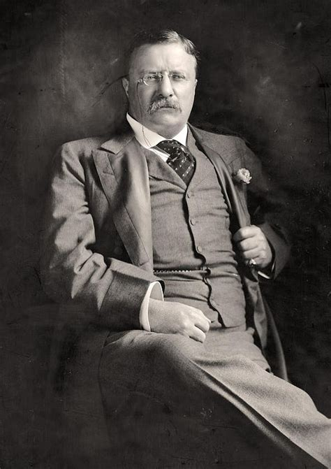 presidency of theodore roosevelt wikipedia the free how the teddy bear got its name james milson s blog