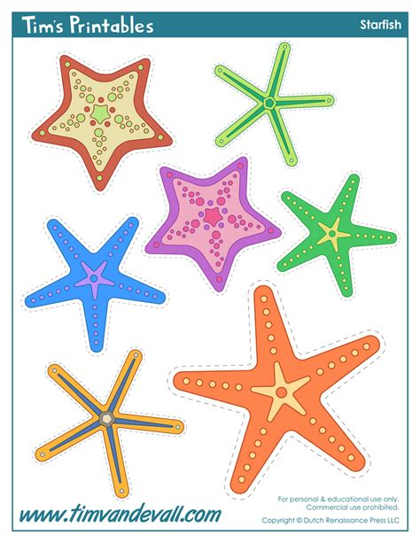 starfish template to print starfish template sea templates for preschool