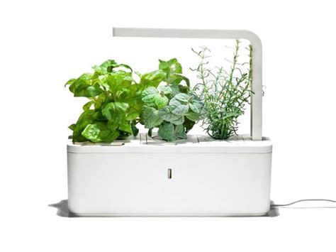 click and grow garden my 6 dream kitchen gadgets