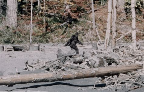 the of bigfoot abandoning bigfoot come on in but leave patty at the door