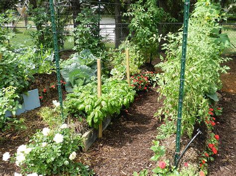 Straw Garden by Quot Straw Bale Lasagna Gardening Sheet Mulching Layering