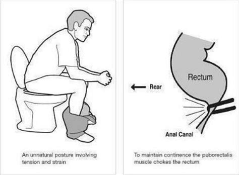 Ac Duduk 1 Juta ini cara sebenar buang air besar di tandas duduk dapat