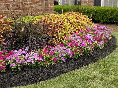 Soil Mix For Container Gardening - gu 237 a sobre el acolchado para plantas o mulching