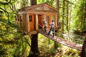 treehouse honeymoon tree houses for rent jetset
