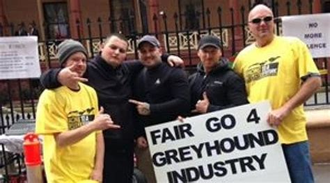 Licensing Criminal Record Exemption Regulations Greyhound Trainer Chad Achurch Obtained Licence Despite