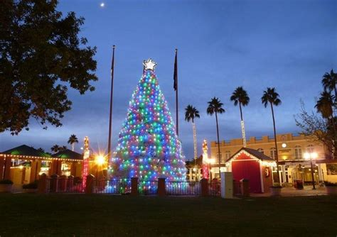 chandler arizona parade of lights and tumbleweed tree