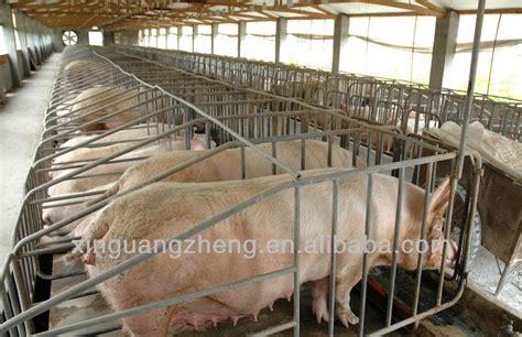 piggery house design piggery farm pig farm house view pig farm house xgz